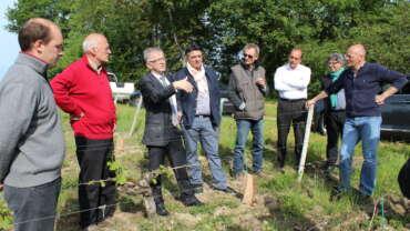 La filière viticole de la région Centre-Val de Loire